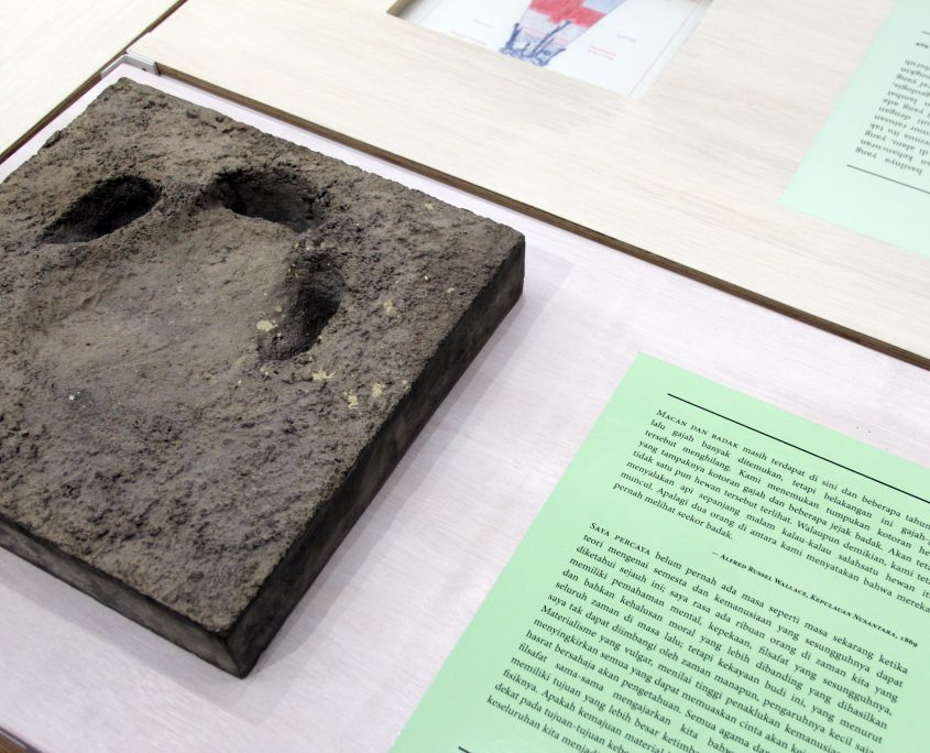 nstallation view of a rare specimen of a concrete cast rhino footprint from MZB's collection.
