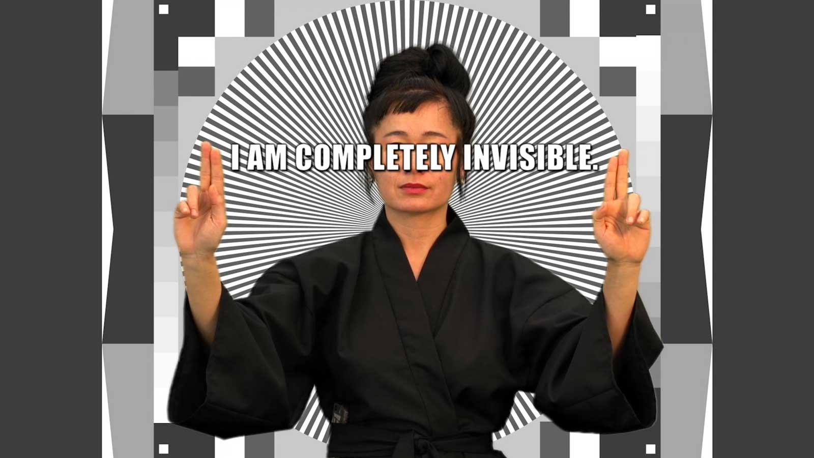 Figure 6. Hito Steyerl, How Not to Be Seen (2013)